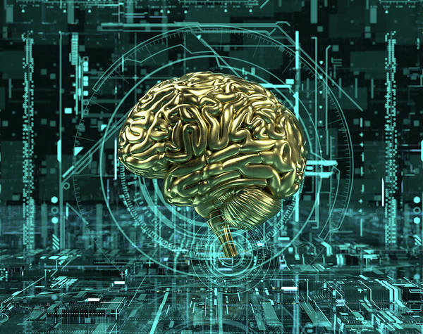 Wall Art - Photograph - Gold Brain At The Center Of Complex by Ikon Images
