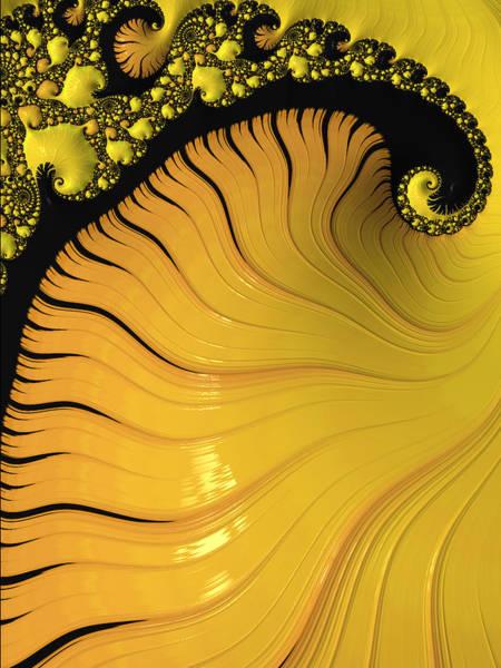 Wall Art - Digital Art - Gold Fractal by Bonnie Bruno