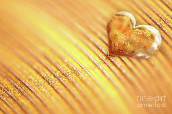 Wall Art - Photograph - Gold Heart by Delphimages Photo Creations