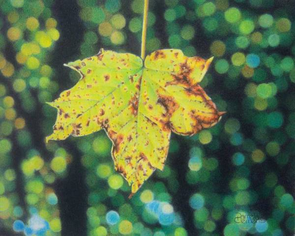 Drawing - Gold Leaf by Pamela Clements