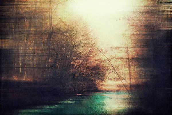 Photograph - Gold Noise by Dirk Wuestenhagen