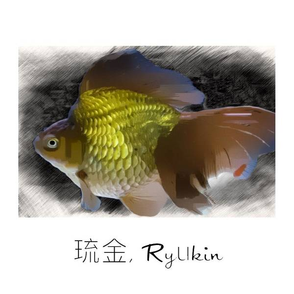 Digital Art - Gold Ryukin Goldfish Print by Scott Wallace Digital Designs