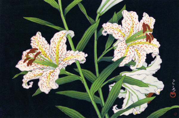 Wall Art - Painting - Golden-banded Lily - Digital Remastered Edition by Kawase Hasui