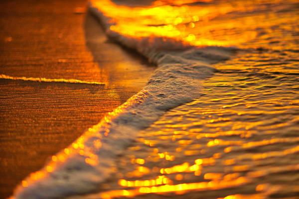 Photograph - Golden Beach by Tom Gresham