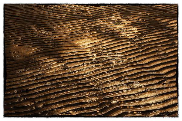 Photograph - Golden Beach  by Wolfgang Stocker