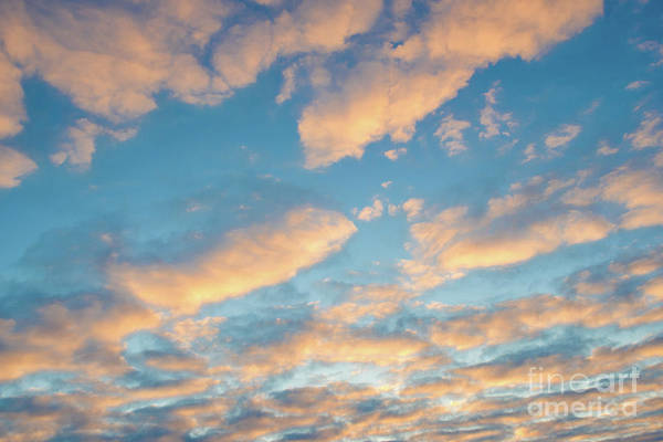Wall Art - Photograph - Golden Clouds At Sunset by Delphimages Photo Creations