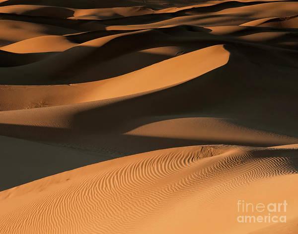 Desert Sunset Photograph - Golden Dunes by Jennifer Magallon