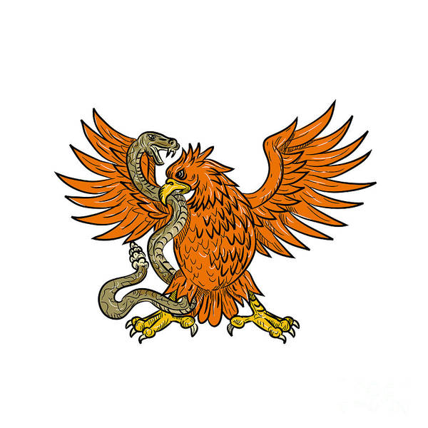 Wall Art - Digital Art - Golden Eagle Grappling Rattlesnake Drawing by Aloysius Patrimonio