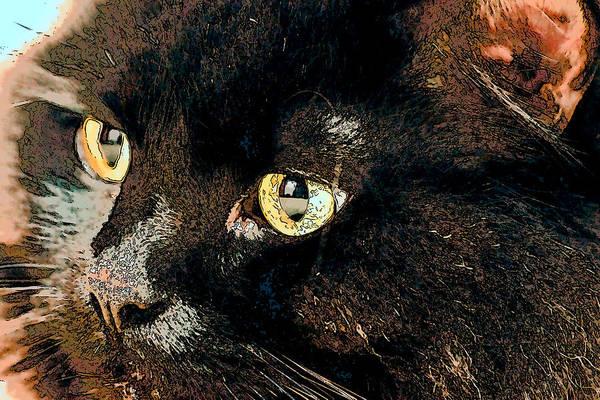 Digital Art - Golden Eye Sketch by Don Northup