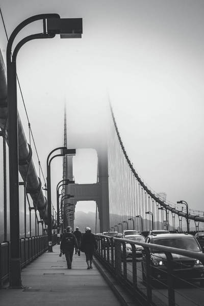 Wall Art - Photograph - Golden Gate Fog by April Reppucci