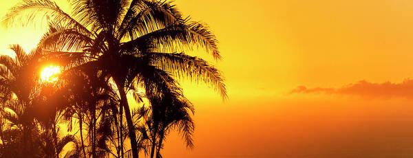 Photograph - Golden Hawaiian Sunset by Christopher Johnson