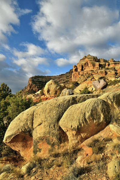 Photograph - Golden Hills East Side Colorado National Monument by Ray Mathis