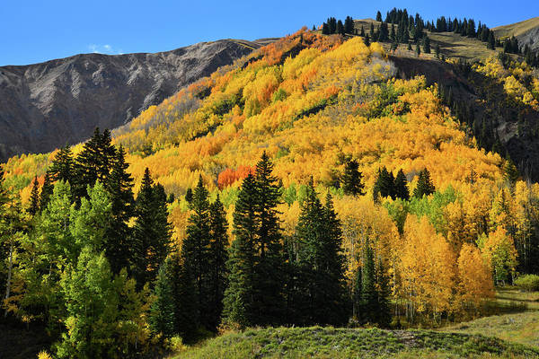 Photograph - Golden Hillsides Along Million Dollar Highway by Ray Mathis