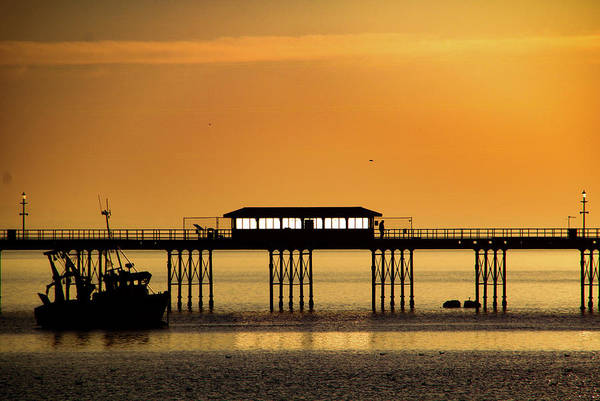 Photograph - Golden Hour by Perggals - Stacey Turner