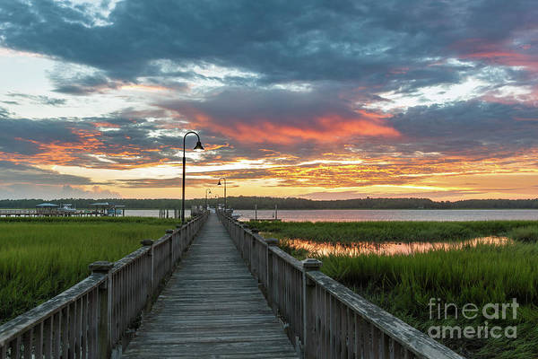 Photograph - Golden Hues Of Orange - Wando River by Dale Powell