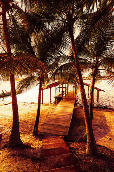 Photograph - Golden Island Dock Under The Palms by Debra and Dave Vanderlaan