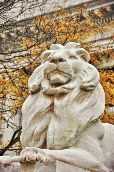 Photograph - Golden Lion Strength by JAMART Photography