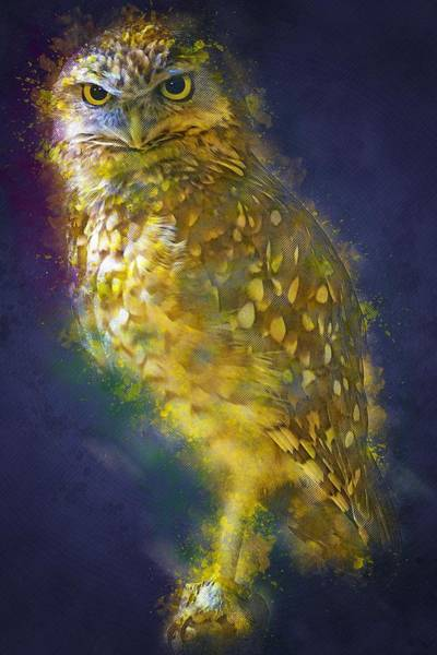 Wall Art - Painting - Golden Owl by ArtMarketJapan