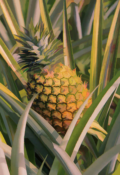 Mixed Media - Golden Pineapple by Rosalie Scanlon