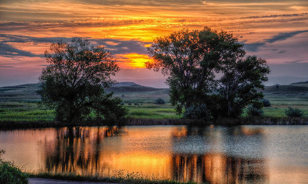 Photograph - Golden Pond At 36x60 by Fiskr Larsen