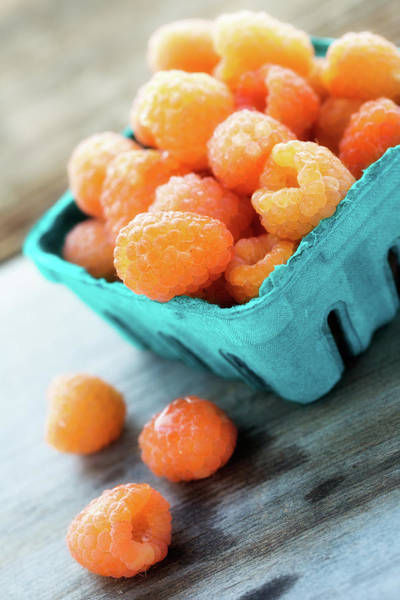 Art Print featuring the photograph Golden Raspberries by Nicole Young