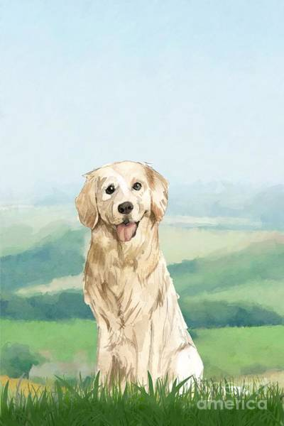 Pedigree Painting - Golden Retriever by John Edwards