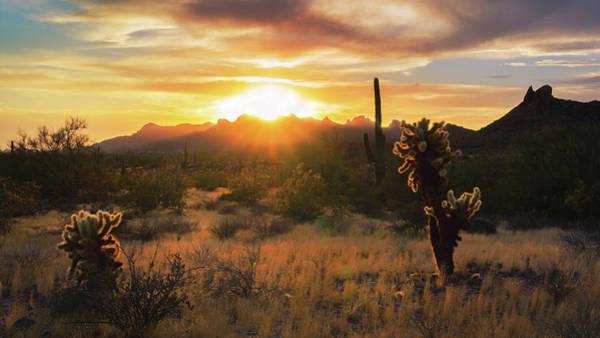 Wall Art - Photograph - Golden Skies In The Sonoran  by Saija Lehtonen