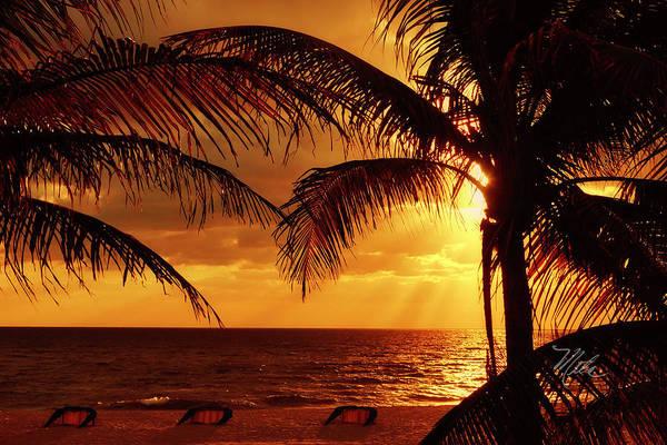 Photograph - Golden Sunrise by Meta Gatschenberger