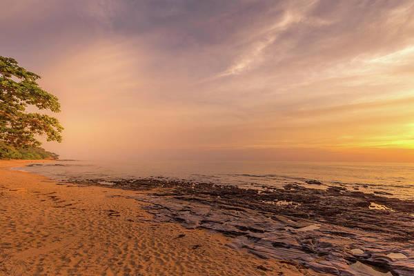 Photograph - Golden Sunset by Georgia Fowler