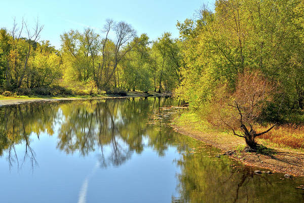 Photograph - Golden Trees On Concord River by Luke Moore