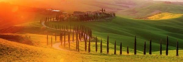 Golden Tuscany II Art Print