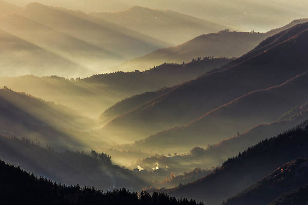 Wall Art - Photograph - Golden Valley by Evgeni Dinev