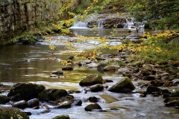 Wall Art - Photograph - Golden Waters by Lana Trussell