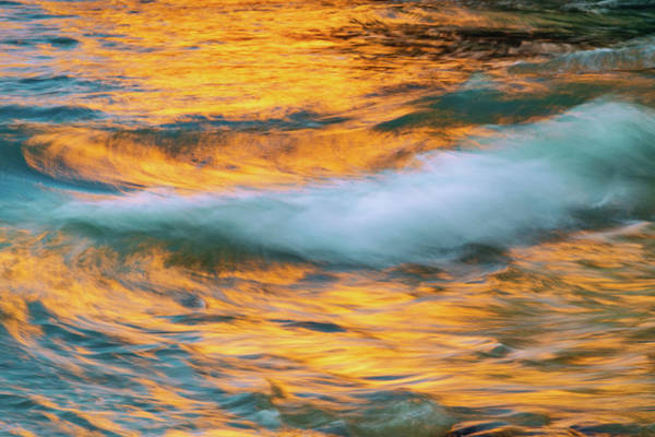Photograph - Golden Wave by Michael Blanchette