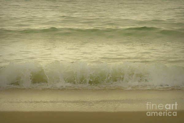 Photograph - Golden Waves by Amy Dundon