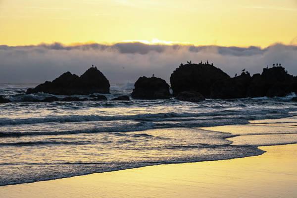 Photograph - Golden Waves by Steven Clark