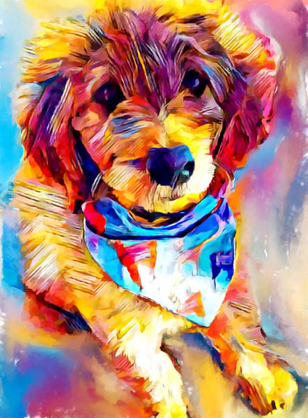 Wall Art - Painting - Goldendoodle by Chris Butler