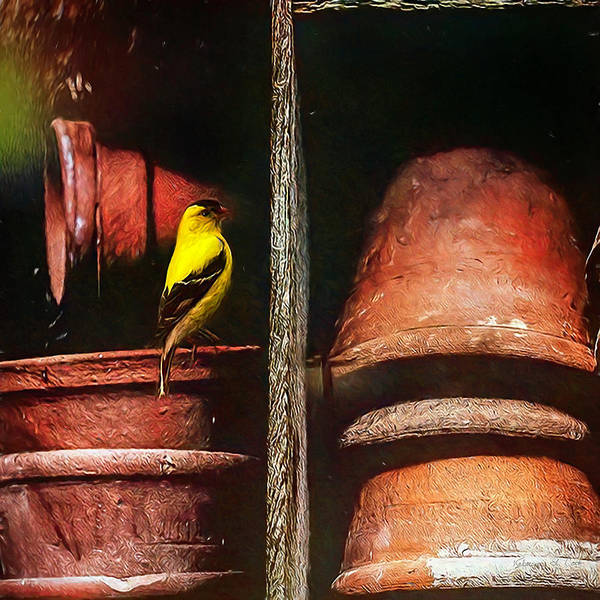 Photograph - Goldfinch And Clay Pots by Bellesouth Studio