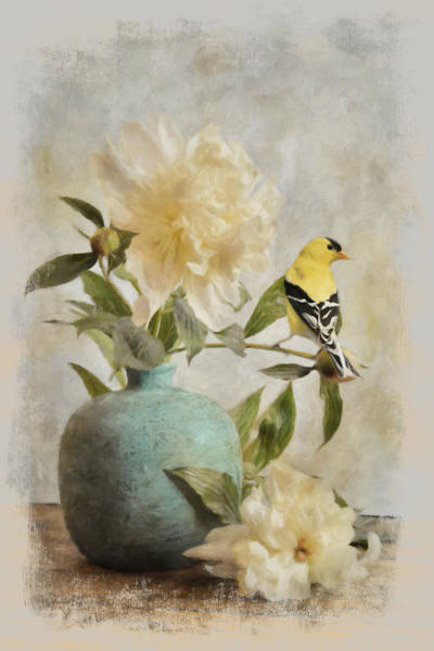 Painting - Goldfinch And The Peonies by Jai Johnson