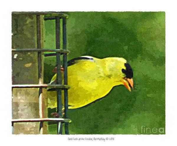Digital Art - Goldfinch At The Feeder by Art MacKay