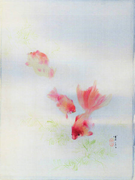Wall Art - Painting - Goldfish - Digital Remastered Edition by Watanabe Seitei