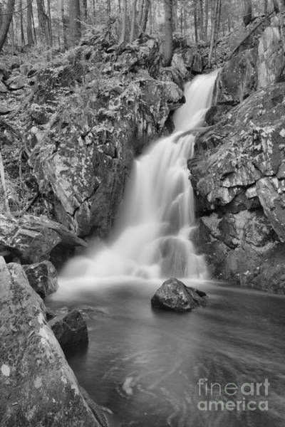 Photograph - Goldmine Brook Falls In The Forest Black And White by Adam Jewell