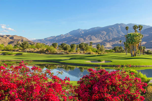 Nature Photograph - Golf Course In Palm Springs, California by Ron thomas