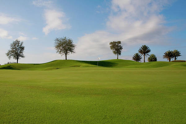 Photograph - Golf Course, Miami Beach, Florida, Usa by Glow Images, Inc