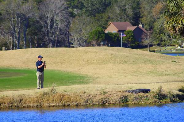 Photograph - Golfer And Alligator  by Cynthia Guinn