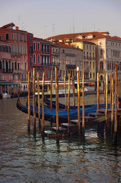 Wall Art - Photograph - Gondolas Bay by Svetlana Sewell