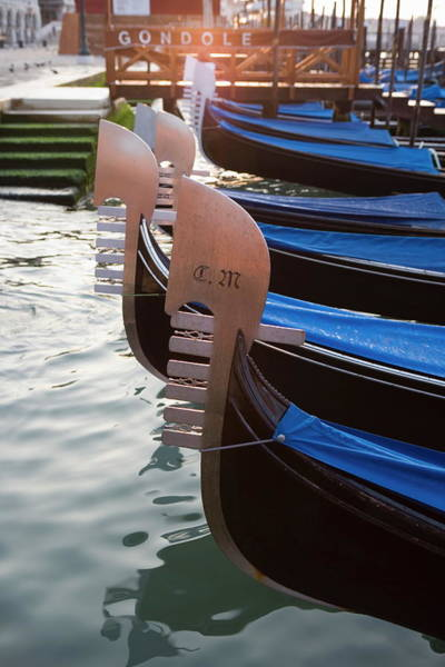 Quayside Photograph - Gondolas Floating In Saint Marks Basin by Martin Child / Robertharding
