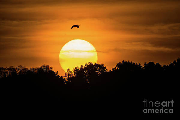 Photograph - Good Friday Sunrise by Keith Morris