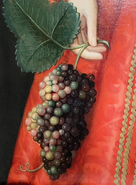 Wall Art - Photograph - Good Luck Grapes by Marilyn Hunt