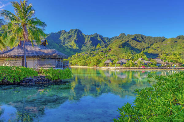 Wall Art - Photograph - Good Morning From Mo'orea French Polynesia by Scott McGuire